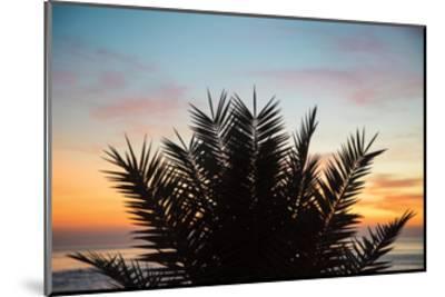Sunset Palms II-Laura Marshall-Mounted Art Print