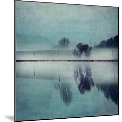 Misty Mirror-Dirk Wuestenhagen-Mounted Art Print