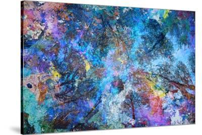 Dreaming up to the Trees-Michael Broom-Stretched Canvas Print