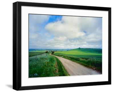 View of road passing through a field, United Kingdom--Framed Photographic Print