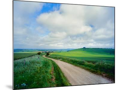 View of road passing through a field, United Kingdom--Mounted Photographic Print