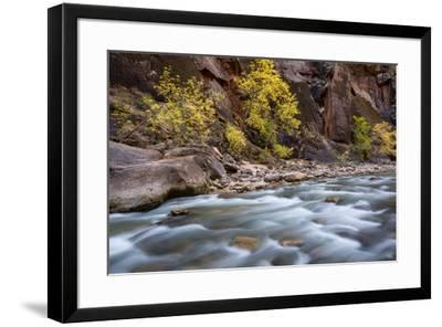 River flowing through rocks, Zion National Park, Utah, USA--Framed Photographic Print
