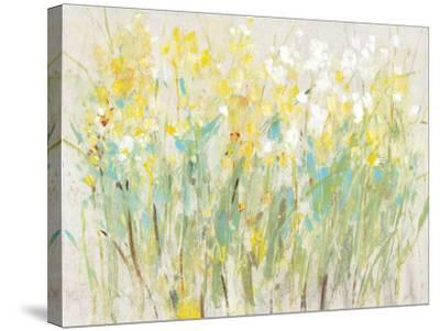 Floral Cluster II-Tim O'toole-Stretched Canvas Print