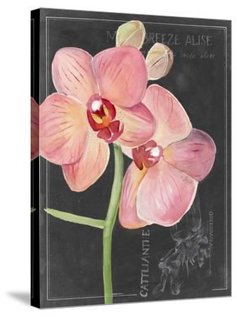Chalkboard Flower I-Jennifer Parker-Stretched Canvas Print