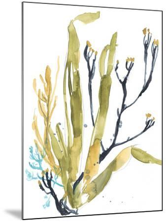 Reef Illusion II-Jennifer Goldberger-Mounted Art Print