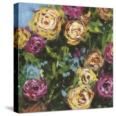 Roses in Sunlight II-Melissa Wang-Stretched Canvas Print