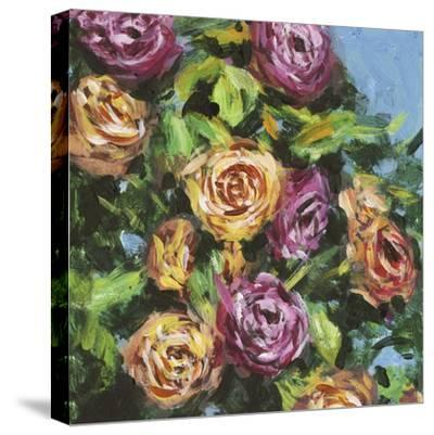 Roses in Sunlight I-Melissa Wang-Stretched Canvas Print