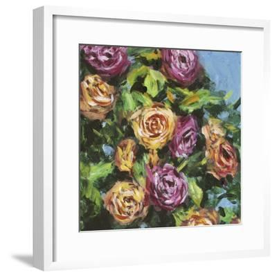 Roses in Sunlight I-Melissa Wang-Framed Art Print