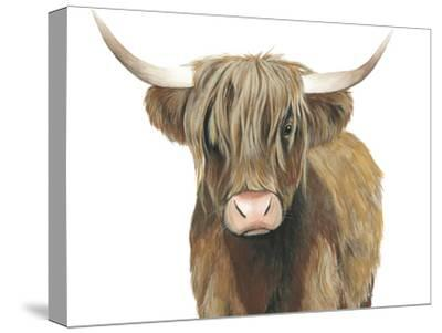 Highland Cattle II-Grace Popp-Stretched Canvas Print