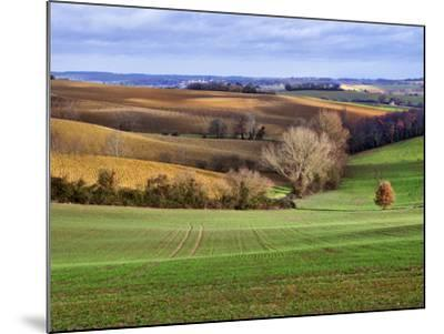 Pastoral Countryside XVII-Colby Chester-Mounted Photographic Print