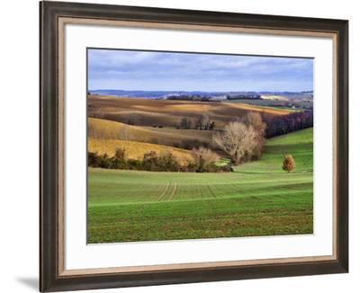 Pastoral Countryside XVII-Colby Chester-Framed Photographic Print