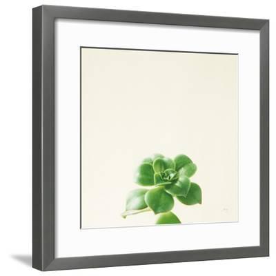 Succulent Simplicity VII Neutral-Felicity Bradley-Framed Art Print