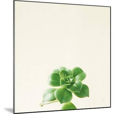 Succulent Simplicity VII Neutral-Felicity Bradley-Mounted Art Print