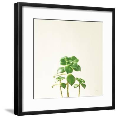 Succulent Simplicity IX Neutral-Felicity Bradley-Framed Art Print