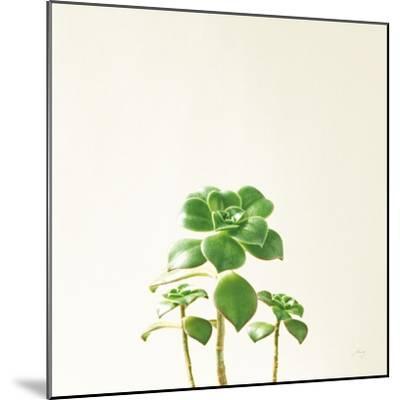 Succulent Simplicity IX Neutral-Felicity Bradley-Mounted Art Print