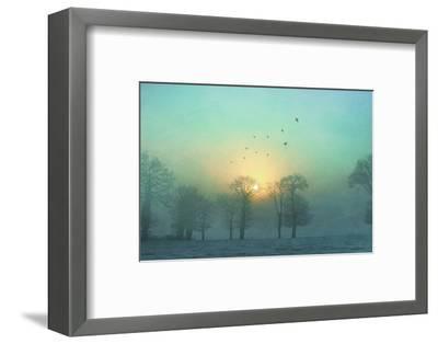 Frozen-Viviane Fedieu Daniel-Framed Premium Photographic Print
