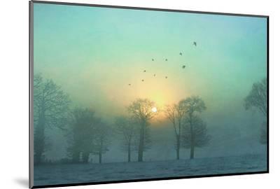 Frozen-Viviane Fedieu Daniel-Mounted Premium Photographic Print