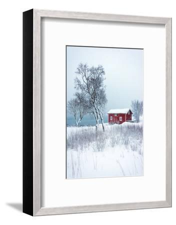 Alone in White-Philippe Sainte-Laudy-Framed Photographic Print