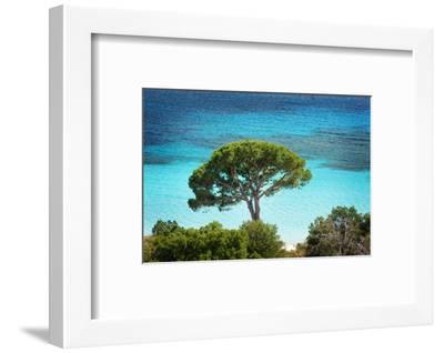 The Colors of Palombaggia-Philippe Sainte-Laudy-Framed Photographic Print