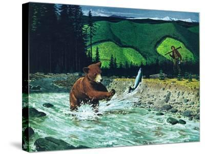 Catching Salmon-Bruce Bontrager-Stretched Canvas Print