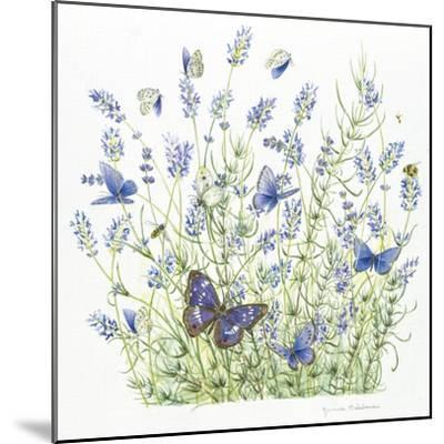 Lavender-Janneke Brinkman-Salentijn-Mounted Giclee Print