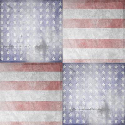 American Born Free Sign Collection V12-LightBoxJournal-Framed Giclee Print