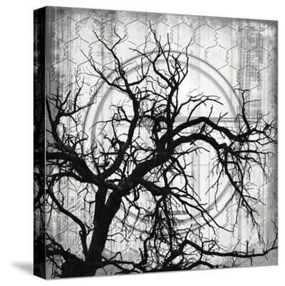 MyFarmMyWay V10-LightBoxJournal-Stretched Canvas Print