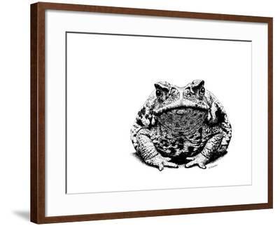 Z21 Toad-Let Your Art Soar-Framed Giclee Print