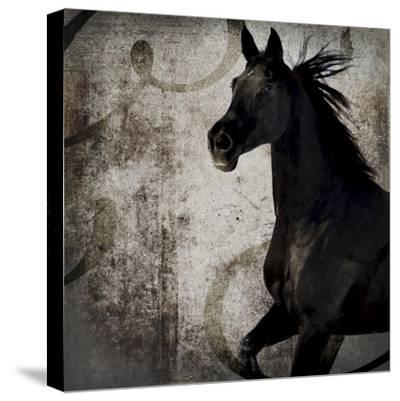 GypsyHorse Collection V1 1-LightBoxJournal-Stretched Canvas Print