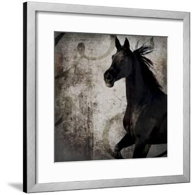 GypsyHorse Collection V1 1-LightBoxJournal-Framed Giclee Print