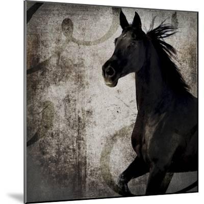 GypsyHorse Collection V1 1-LightBoxJournal-Mounted Giclee Print