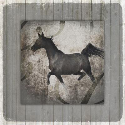 GypsyHorse Collection V1 12-LightBoxJournal-Framed Giclee Print