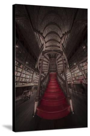 Lello 2-Moises Levy-Stretched Canvas Print