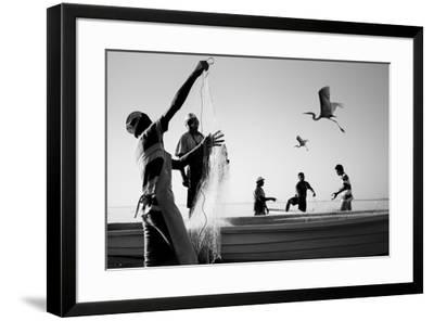 Tropical Shadows-24-Moises Levy-Framed Giclee Print