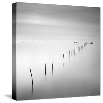 Lines 2-Moises Levy-Stretched Canvas Print