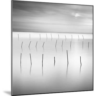 Lines 1-Moises Levy-Mounted Giclee Print