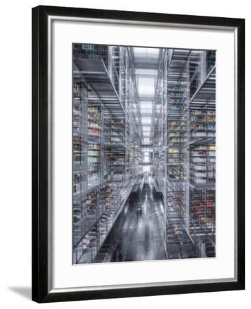 Vasconcelos 2-Moises Levy-Framed Giclee Print