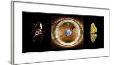 Vision-Randy Waln-Framed Giclee Print