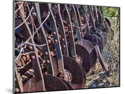 Farm Rust-Randy Waln-Mounted Giclee Print