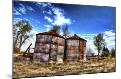 Grain Storage Bins-Randy Waln-Mounted Giclee Print
