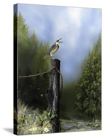 EarlyMorningSong16x20-Russell Bentley-Stretched Canvas Print
