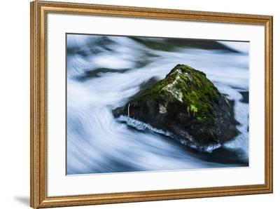Moss Covered Rock Slow Swirling Water-Anthony Paladino-Framed Giclee Print