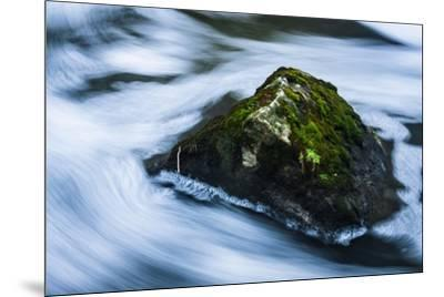 Moss Covered Rock Slow Swirling Water-Anthony Paladino-Mounted Giclee Print