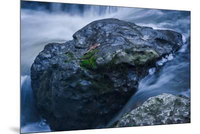 Massive Moss Covered Rock Under Waterfalls-Anthony Paladino-Mounted Giclee Print