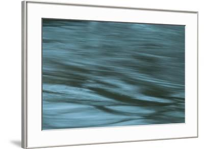 Dreaminess-Anthony Paladino-Framed Giclee Print