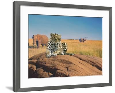 Leopard-Ata Alishahi-Framed Giclee Print