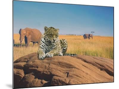 Leopard-Ata Alishahi-Mounted Giclee Print