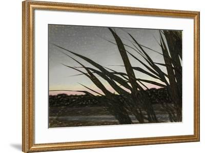 Liquid Pencil Drawing Giant Reeds After Sunset-Anthony Paladino-Framed Giclee Print