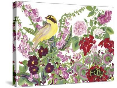 Warbler With Frog-Carissa Luminess-Stretched Canvas Print