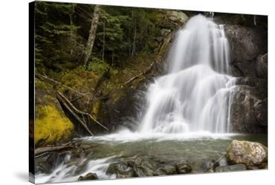 The Sound Of Falling Water-Brenda Petrella Photography LLC-Stretched Canvas Print